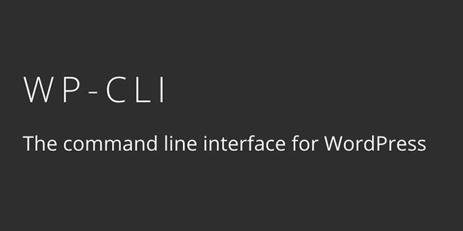 38. WP-CLI