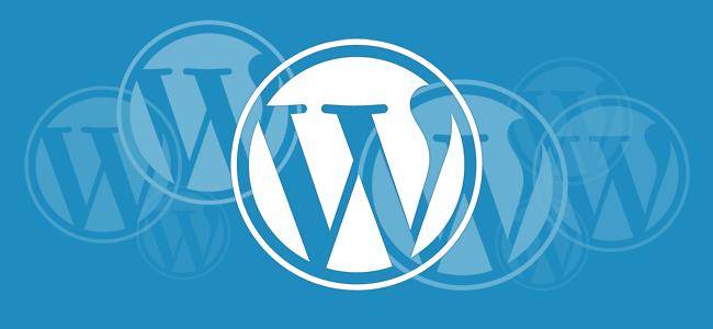 5. WordPress Multisite