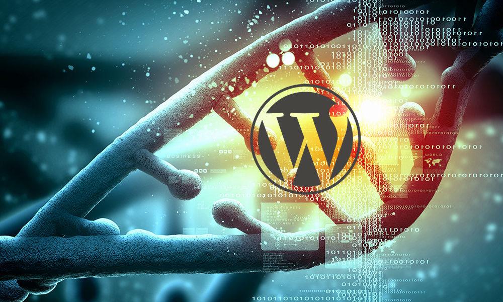 3. Themes de WordPress